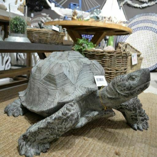 tortuga de tierra gigante
