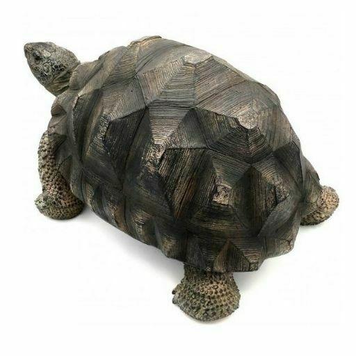 tortuga de tierra